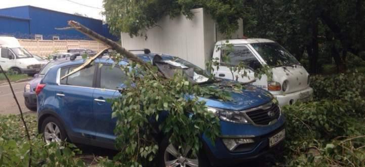 مقتل 12 شخصا بسبب إعصار شديد ضرب العاصمة الروسية موسكو