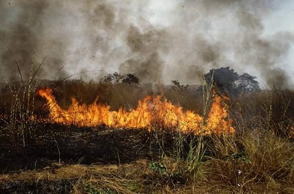 انجاز لبناني لمواجهة الحرائق: التنبؤ بالحريق قبل حدوثه بـ48 ساعة