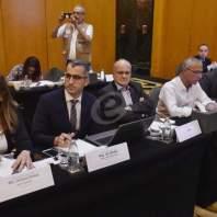 ورشة عمل لدعم لبنان في تطبيق في تطبيق التزاماته في اتفاقية الذخائر العنقودية- محمد سلمان