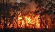 حرائق غابات روسيا تغطى مساحة 30 ألف كيلومتر