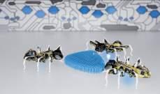 روبوتات مذهلة تحاكي النمل والفراشات والحرباء