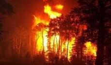 رياح شديدة تؤجج حرائق الغابات في تركيا