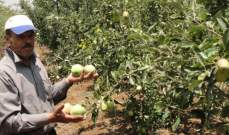 """""""إزرعوا"""" وفق استراتيجيّة وطنيّة والا فأمننا الغذائي سيكون في خطر…"""