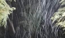 النشرة: بدء تساقط الثلوج في بريتال وبعلبك
