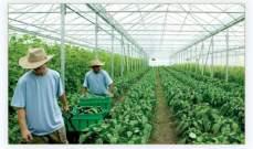 الفضلات العضوية مورد جديد للاقتصاد والبيئة: الزراعة في عالم بلا مياه!