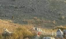 بلدية ميس الجبل نددت باطلاق الجيش الاسرائيلي رشقات نارية في اتجاه المنازل