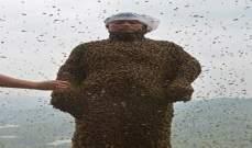 نجا من الموت رغم ألف لدغة نحلة