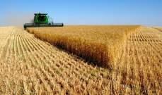 سلطات ايران تشتري 9.2 مليون طن من القمح المحلي