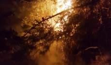 الدفاع المدني: إخماد حريق أعشاب يابسة وهشيم وأشجار في دير دوريت- الشوف