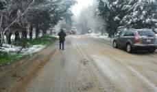 النشرة: إعادة فتح طريق رياق بعد إزالة شجرة ضخمة أدت لقطعها