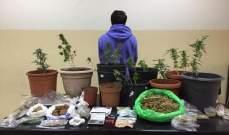 قوى الأمن: توقيف مروج مخدرات في ساحل علما