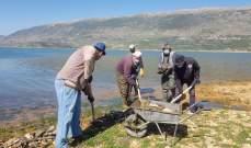 النشرة:فرق مصلحة الليطاني باشرت بإزالة الاسماك النافقة عن ضفاف القرعون