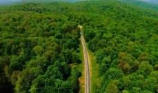 الغابات الهيركانية الإيرانية تدرج على لائحة التراث العالمي للأونيسكو