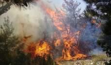 أهالي القبيات يناشدون الجيش لإرسال طوافات لإخماد الحريق بأحراج البلدة