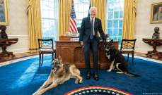 بايدن وزوجته يفجعان بنفوق كلبهما