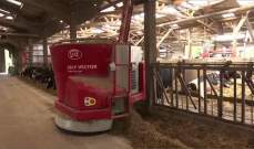 مزرعة أبقار في فرنسا تديرها روبوتات