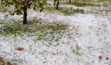 مزارعو التفاح يطالبون الدولة بتعويضهم خسائرهم جراء هطول البرد