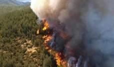 رئس مركز الدفاع المدني بزغرتا: الحريق مفتعل وسيطرنا على 90 بالمئة منه