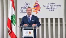 سفير النمسا: حقوق الإنسان عالمية ومترابطة وغير قابلة للتجزئة