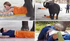 جلسات تدليك تحت أقدام الفيلة!!