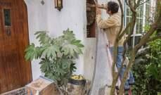 زوجان عاشا مع 80 ألف نحلة لعامين بمنزلهما في اسبانيا
