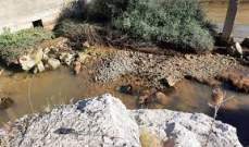 عودة مياه نبع الصفا في وادي خالد الى التدفق بعد 3 أيام من غورها