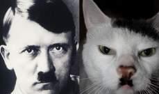 خطأ جيني يمنح قطة شارب هتلر