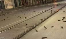 الألعاب النارية تتسبب بنفوق مئات الطيور في ميلانو