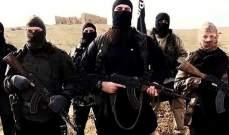 """اللجنة الدولية لحقوق الإنسان: يوجد 5 آلاف عنصر من """"داعش"""" في لبنان"""