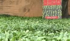 منظمة مالطا في لبنان أطلقت مشروعًا زراعيًّا دعمًا للمزارعين الصغار