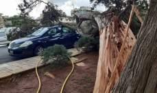 النشرة: صيدا التزمت بالإقفال التام تزامنا مع اشتداد العاصفة التي خلفت أضرارا