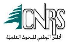 المجلس الوطني للبحوث العلمية: الدخان الناجم عن احتراق نترات الأمونيوم يلوّث الهواء ويؤثر على الصحة العامة