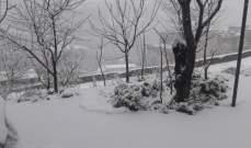 النشرة: الثلوج مستمرة بالتساقط في قاع الريم حيث بلغت سماكتها 30 سنتيمترا