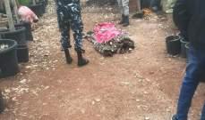 العثور على عامل سوداني مشنوقا داخل احدى الخيم الزراعية في بلدة عبا