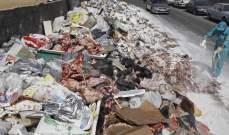 مصادر وزارية للنهار: هناك تكتما على تفاصيل خطة ترحيل النفايات وكلفتها