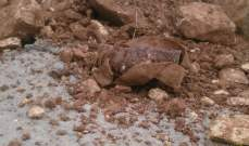 العثور على قنبلة دخانية في منطقة أبي سمراء ولا مواد متفجرة فيها