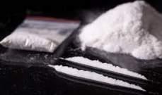 السلطات الهولندية تضبط كمية قياسية من الكوكايين في موز مهروس