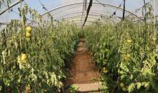 أنقذوا القطاع الزراعي وإلا...