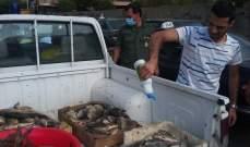 ملاحقة بائعي السمك الملوث في بيروت بتوجيهات من المحافظ