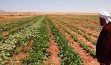 مصلحة الابحاث العلمية الزراعية: على المزارعين البدء بري المزروعات بدءً من يوم الجمعة