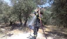 اخماد حريق في بلدة كوشا اتى على مساحات من الزيتون
