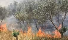 حرائق تلتهم كروم الزيتون بخراج بلدة عبا في جنوب لبنان