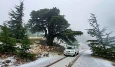 الطريق الذي يصل الشوف بالبقاع عبر معاصر الشوف - الأرز مقطوع بسبب تراكم الثلوج
