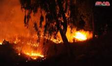 سانا: مقتل شخص وإصابة إثنين آخرين جراء حريق كبير بأراض زراعية غرب دمشق