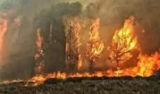 اندلاع حرائق كبيرة في محافظات حمص وطرطوس واللاذقية
