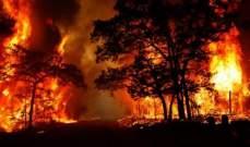 رجال الإطفاء يواصلون مكافحة 100 من حرائق الغابات في نيو ساوث ويلز