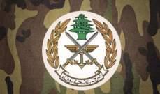 الجيش: تعرض منطقتي الدمشقية والشواكير لغارتين جويتين إسرائيليتين