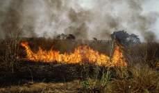 النشرة: الحرائق بغابات ريفي اللاذقية وحماة تتواصل لليوم الرابع على التوالي
