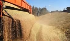 مسؤول أوكراني عن سرقة باحتياطيات الحبوب: الفئران التهمت 2700 عربة