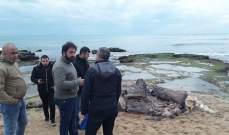 دائرة الصيد المائي والبري عاينت الحوت النافق على شاطىء الصرفند